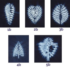 Small Shibori template set by Jane Callender