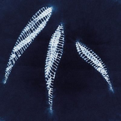 Shibori Stream online classes Level 1